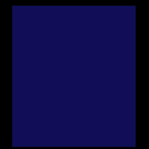 Alaska Wild Salmon Company